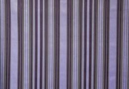 Florance stripe violin
