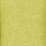 Fondue plain green