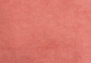 Furor pink