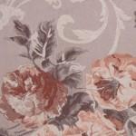 Marie Antoinette rose