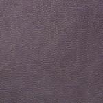 Mercury violet