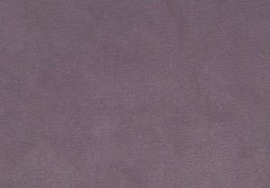 Solo lilac