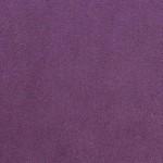 Solo violet