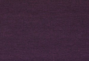 Sparta plain plum