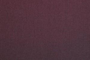 Vision plain violet